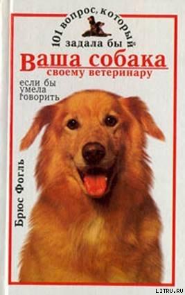 101 вопрос, который задала бы ваша собака своему ветеринару (если бы умела говорить) - Фогль Брюс